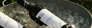 Wein in Weinkühler