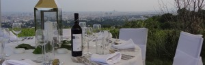 Dinner im Weingarten