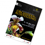 Ausstellungsplakat Orchideenausstellung 2017 freigestellt