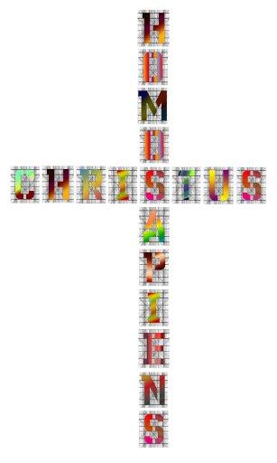 Michael Endlicher, Christus - Homo Sapiens